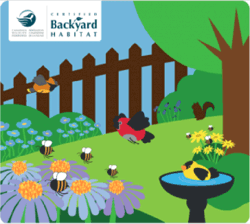 Canadian wildlife federation certified backyard habitat award