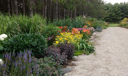 Plant Combinations and Inspiration from Plant Paradise Country Gardens